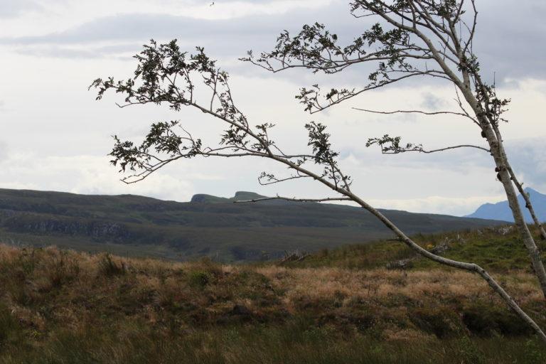 Schotland Natuur